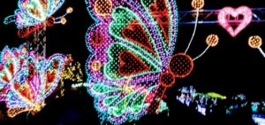 蝶のイルミネーション