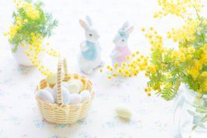 ウサギと花