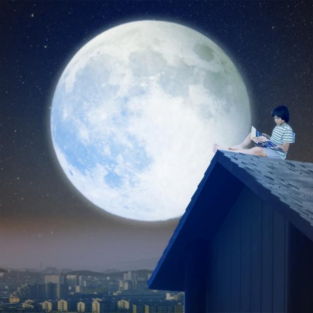 屋根に登って月をみる。